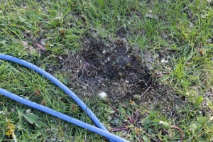 The burnt spot on the lawn from when Jack used a frayed extension cord for his tools.